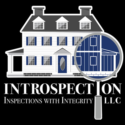 Introspection Inspections